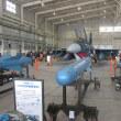 ブルーインパルスが来た築城航空祭