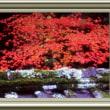『紅葉景』 香嵐渓