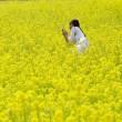 菜の花畑で記念撮影 (三重県明和町斎宮)