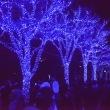 青の洞窟・渋谷・・3