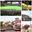 九州&大阪の旅✨