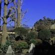 えっ!(?_?)豊島区内で『山開き』だってぇ~?「豊島長崎の富士塚」で!?