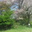 八幡山砦跡