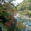 嵐山~亀岡間 秋のポタリング(続き)