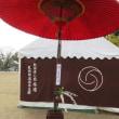 熊本城二の丸広場でお茶会がありました