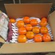 柿を送りました。