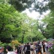梅雨でも上野の賑わい