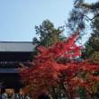 「紅葉/南禅寺」