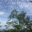 2018/5/6 登山10...夫婦登山