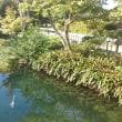 遠州横須賀 清水邸庭園