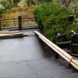 本屋親父のつぶやき 11月20日春日神社も冬支度が始まりました。