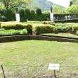 箱根彫刻の森美術館その3    投稿者:佐渡の翼