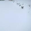 2018/03/21  正午 積雪状況 / 山梨県 北杜市 小淵沢(900m付近)