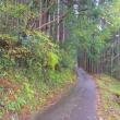 朝の散歩・南岸道路