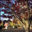 秋キャンプに行ってきた。