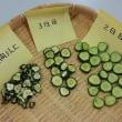 とぴあ浜松で干し野菜講習会