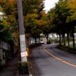 清見台の秋