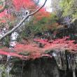 石山観音公園へ紅葉と石仏群を見に行こう