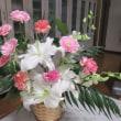 ムチャ優し色の花を買いました