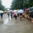 協会後援 名古屋ビーガングルメ祭り(5/13)の報告