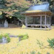 岩戸落葉神社のライトアップ