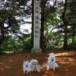 日本百名城☆春日山城跡☆☆とんとことーん(*´▽`*)♪♪