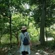 三重県民の森、園内散策