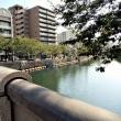 2017・9・24 黄金町バザール2017他者と出会うための複数の方法vol.2 マツダホームに松田直樹氏在廊だった!