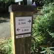 本宮山林道(林道本宮山線)
