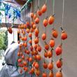 咲の部屋・・・干し柿(その後)