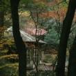 佐野市にある蓬莱山に行ってきた。