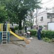本日の第二弾 ~公園の雑草取り~
