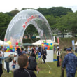 桂川フェスティバル