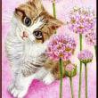 色鉛筆画413 (アルメリアと子猫)