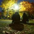 北大金葉祭を撮る…紅葉シリーズ5(最終回)