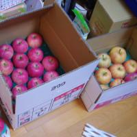 リンゴいっぱい!