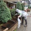 ●10/17 環境の緑化と美化報告 雨でも参加ありがとうございます。