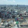 新宿、損保ジャパン日本興亜美術館 ターナー展