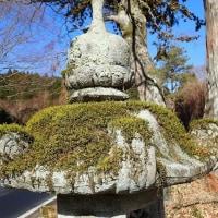 石灯籠のコケ