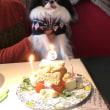 ♪♪ Happy Birthday to 鈴太 ♪♪