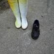 靴が片方ない !!