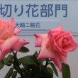 第20回国際バラとガーデニングショウ 2018.5.19