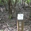 まち歩き西0963 京都一周トレイル 西山コース 33
