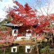仕事で京都一泊旅行