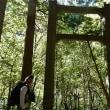 坊主谷ー国見山ー田丸…徳島県