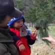 ちびっこ遊び隊!通信 2018年12月4日(火)木の実でクリスマス飾りをつくろう!~月寒公園