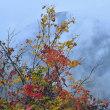 「雨の秋元湖を臨む」 福島県 裏磐梯 レークラインの三湖パラダイスにて撮影!