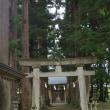 新潟県阿賀町、天満宮北野神社の大杉二本です!!