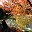 日比谷公園の紅葉・・1 パート~3