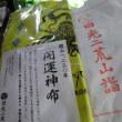 日光、二荒山神社を参拝  5/23誕生花・・・石竹